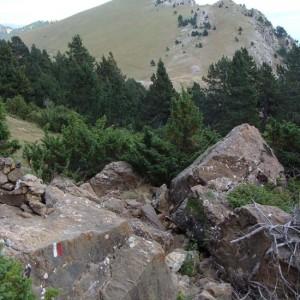 Rutas Guiadas Pirineo